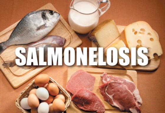 74023-en-la-provincia-se-confirmaron-671-casos-de-salmonella-durante-2020